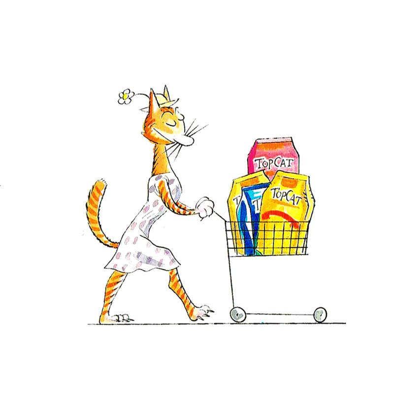 Top Cat folheto (3c)