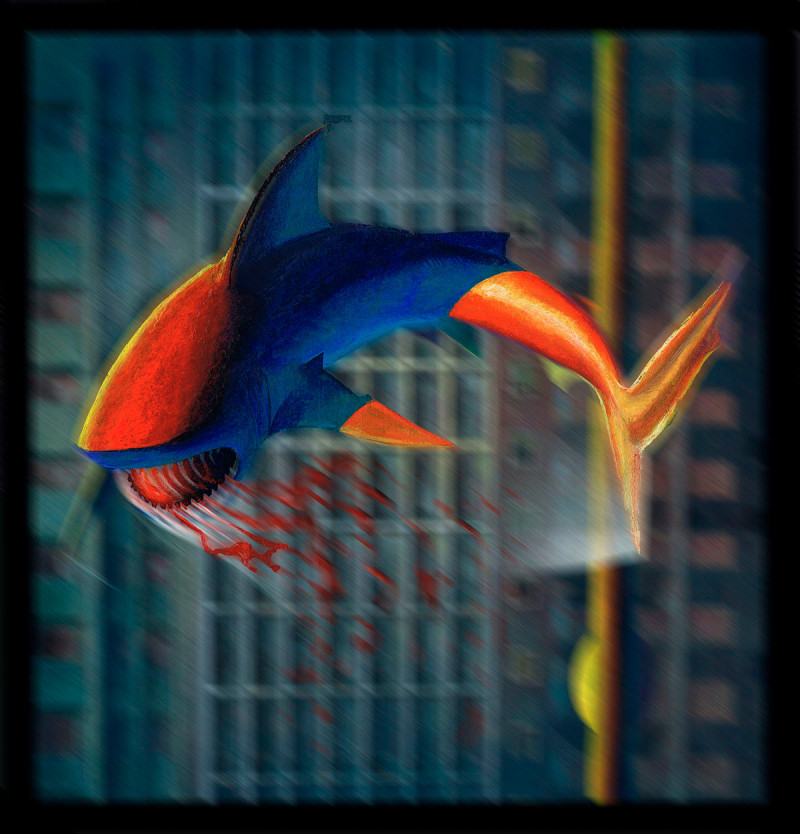 cd-tubaroes-voadores-13