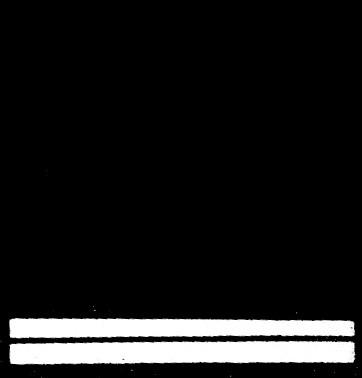 fábula 27