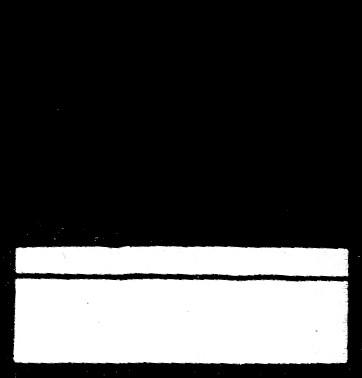 fábula 28