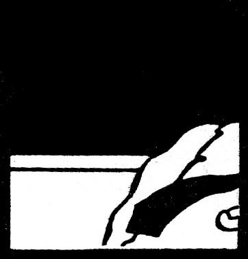 fábula 31