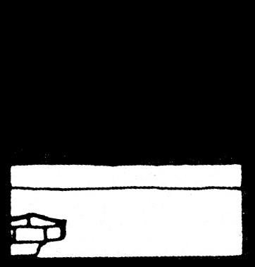 fábula 43