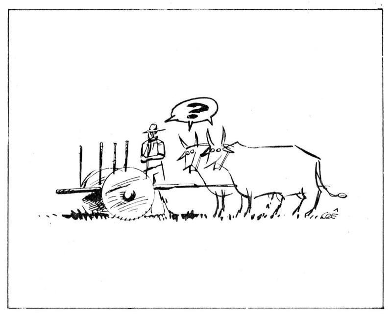 pg3-fsp-77-11