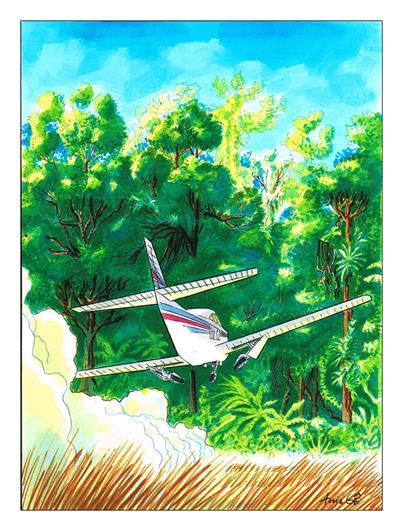 playboy avião 5 (Copy) (Copy)